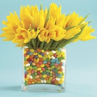 daffodils and jellybeans